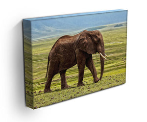 Brown Elephant Print - Canvas Art Rocks - 3