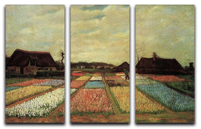 Bulb Fields by Van Gogh 3 Split Panel Canvas Print