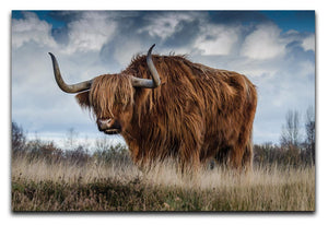 Bull Print - Canvas Art Rocks - 1