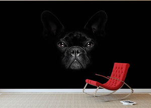 Bulldog dog Wall Mural Wallpaper - Canvas Art Rocks - 2