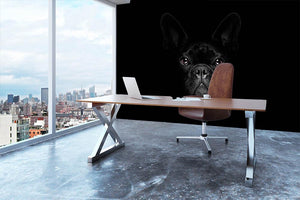 Bulldog dog Wall Mural Wallpaper - Canvas Art Rocks - 3