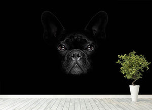 Bulldog dog Wall Mural Wallpaper - Canvas Art Rocks - 4