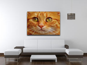 Cat Close Up Print - Canvas Art Rocks - 4