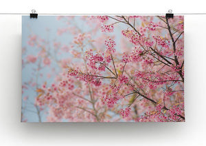 Cherry Blossom Canvas Print or Poster - Canvas Art Rocks - 2