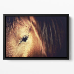 Close-up eye of Arabian bay horse on dark Floating Framed Canvas - Canvas Art Rocks - 2