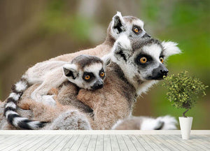 Close-up of a ring-tailed lemur Wall Mural Wallpaper - Canvas Art Rocks - 4