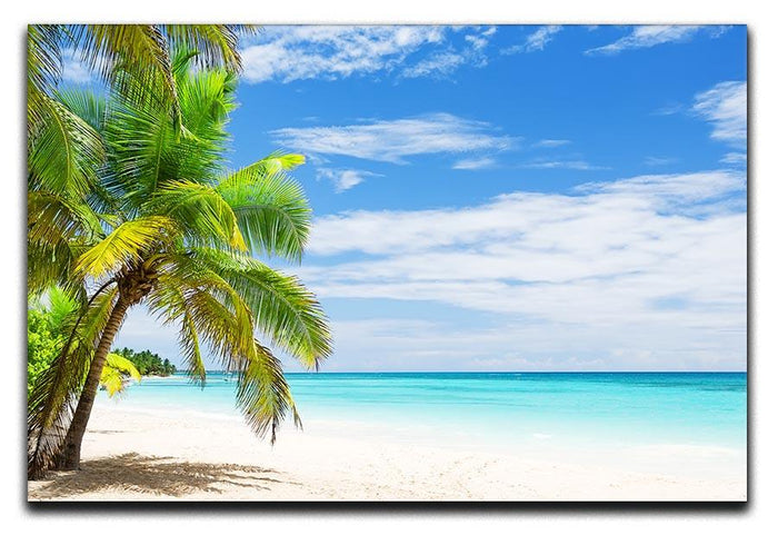 Coconut Palm trees on white sandy beach Canvas Print or Poster