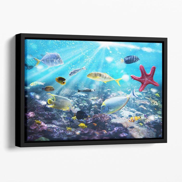 Colourful fish and marine vegetation undersea with sunray Floating Framed Canvas