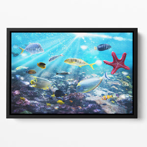 Colourful fish and marine vegetation undersea with sunray Floating Framed Canvas - Canvas Art Rocks - 2