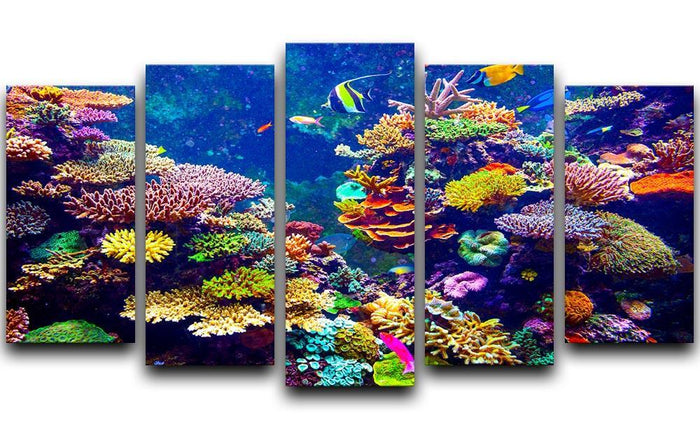 Coral Reef and Tropical Fish 5 Split Panel Canvas