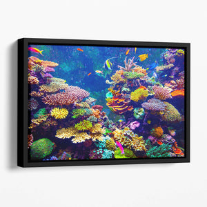 Coral Reef and Tropical Fish Floating Framed Canvas