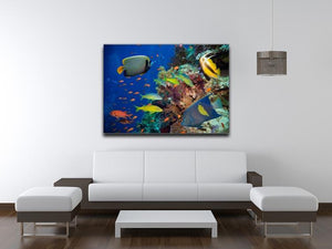 Coral Reef on Red Sea Canvas Print or Poster - Canvas Art Rocks - 4