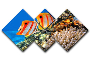 Coral reef and Copperband butterflyfish 4 Square Multi Panel Canvas  - Canvas Art Rocks - 1