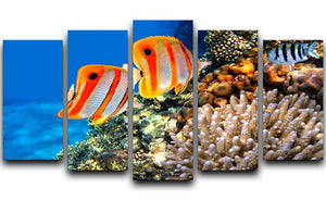 Coral reef and Copperband butterflyfish 5 Split Panel Canvas  - Canvas Art Rocks - 1