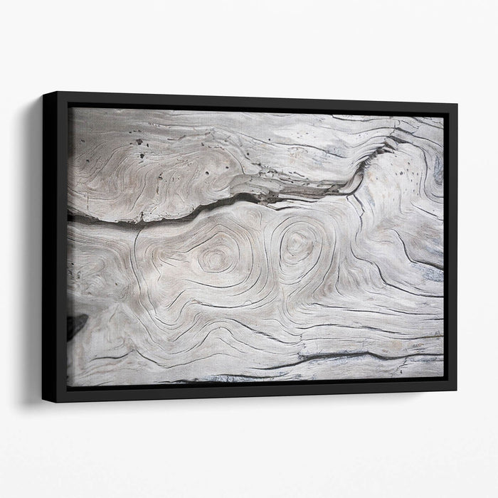 Cracks and structures in wood Floating Framed Canvas