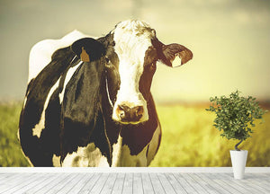 Dairy cow on the countryside Wall Mural Wallpaper - Canvas Art Rocks - 4