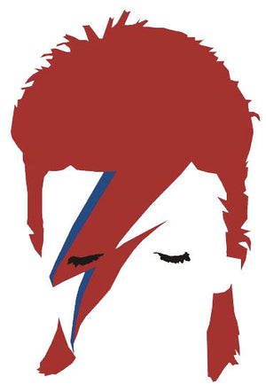 David Bowie Wall Decal - US Canvas Art Rocks