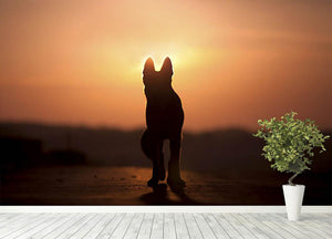 Dog backlight silhouette in sunset Wall Mural Wallpaper - Canvas Art Rocks - 4