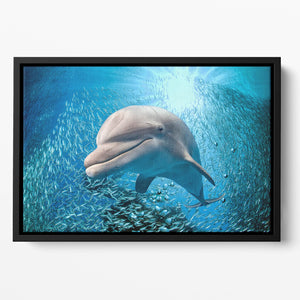Dolphin underwater on ocean Floating Framed Canvas