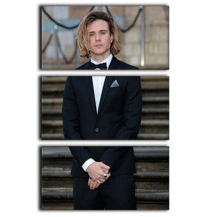Dougie Poynter 3 Split Panel Canvas Print - Canvas Art Rocks - 1