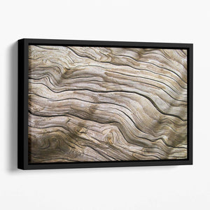 Driftwood Floating Framed Canvas