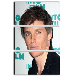 Eddie Redmayne 3 Split Panel Canvas Print - Canvas Art Rocks - 1