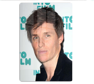 Eddie Redmayne HD Metal Print - Canvas Art Rocks - 1