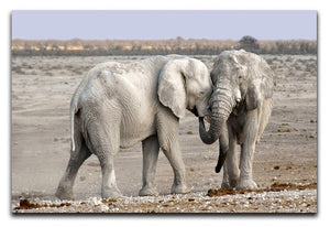Elephant Print - Canvas Art Rocks - 1