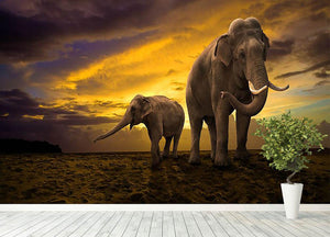 Elephants family on sunset Wall Mural Wallpaper - Canvas Art Rocks - 4
