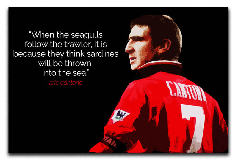 Eric Cantona Seagulls Canvas Print or Poster - Canvas Art Rocks