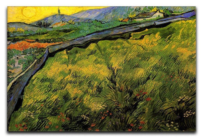 Field of Spring Wheat at Sunrise by Van Gogh Canvas Print or Poster