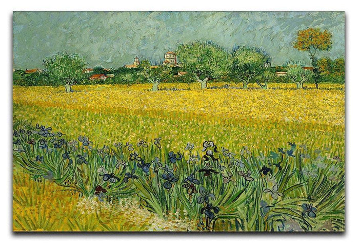 Field with flowers near Arles Canvas Print or Poster
