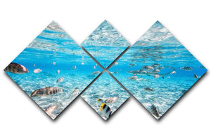 Fish and black tipped sharks 4 Square Multi Panel Canvas  - Canvas Art Rocks - 1