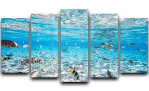 Fish and black tipped sharks 5 Split Panel Canvas  - Canvas Art Rocks - 1