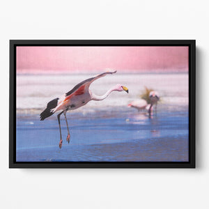Flamingo in Bolivia Floating Framed Canvas - Canvas Art Rocks - 2