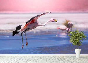 Flamingo in Bolivia Wall Mural Wallpaper - Canvas Art Rocks - 4