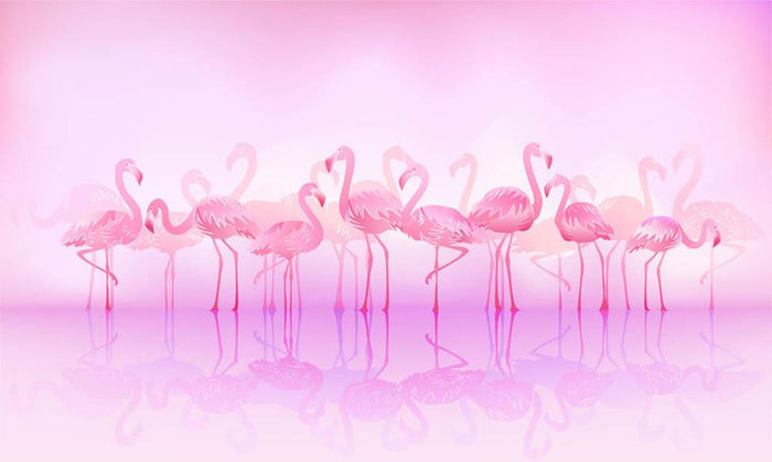 Flock of caribbean flamingos over a lake Wall Mural Wallpaper