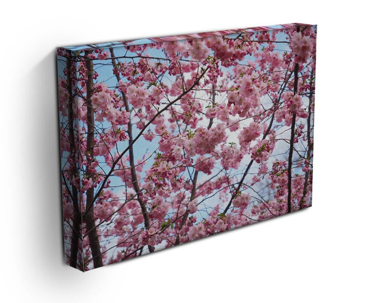 Landscape Flower Print - Canvas Art Rocks - 3