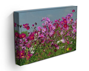 Flower field with blue sky Canvas Print or Poster - Canvas Art Rocks - 3