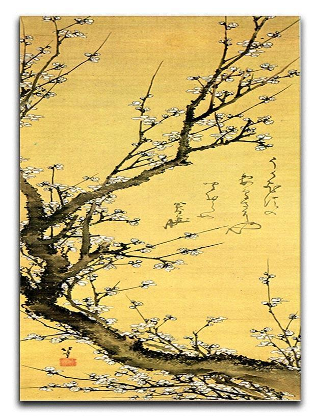 Flowering plum by Hokusai Canvas Print or Poster