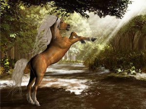 Forest Unicorn Wall Mural Wallpaper - Canvas Art Rocks - 1