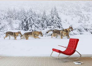 Four wolves in fresh snow in the mountains Wall Mural Wallpaper - Canvas Art Rocks - 2