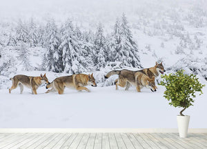 Four wolves in fresh snow in the mountains Wall Mural Wallpaper - Canvas Art Rocks - 4