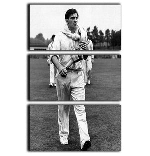 Fred Trueman 1954 3 Split Panel Canvas Print - Canvas Art Rocks - 1