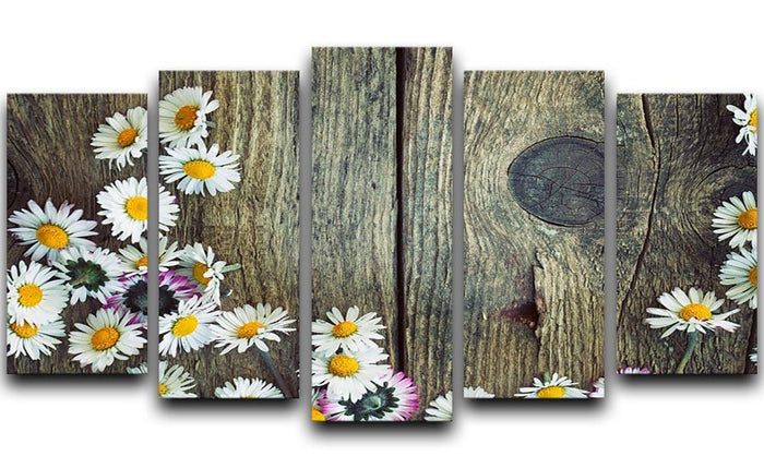 Fresh daisies on wood 5 Split Panel Canvas