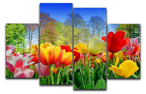 Fresh multicolored tulips in a spring park 4 Split Panel Canvas  - Canvas Art Rocks - 1