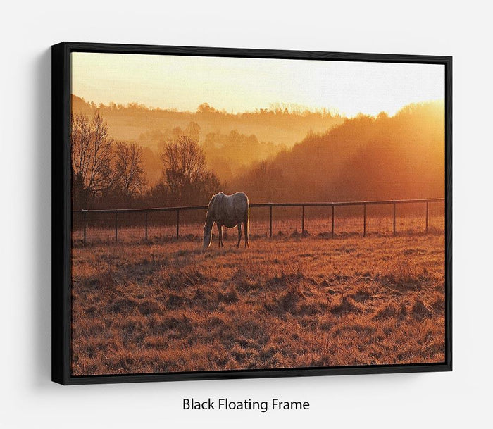 Frosty Morning Floating Frame Canvas