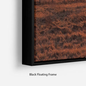 Frosty Morning Floating Frame Canvas - Canvas Art Rocks - 2