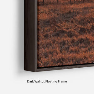 Frosty Morning Floating Frame Canvas - Canvas Art Rocks - 6