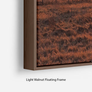 Frosty Morning Floating Frame Canvas - Canvas Art Rocks - 8